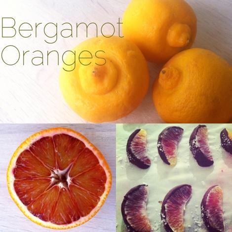 Orange Panel 2